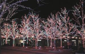 Roberts Electric LED lights